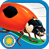 Ladybug at Orchard Avenue on iTunes App Store
